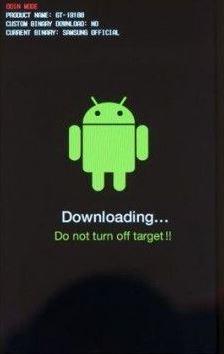 Die Anzeige im Download-Modus.